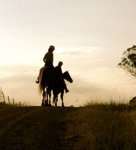 A wonderful afternoon horse ride as the sun was setting