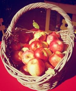 garden-2014-apples