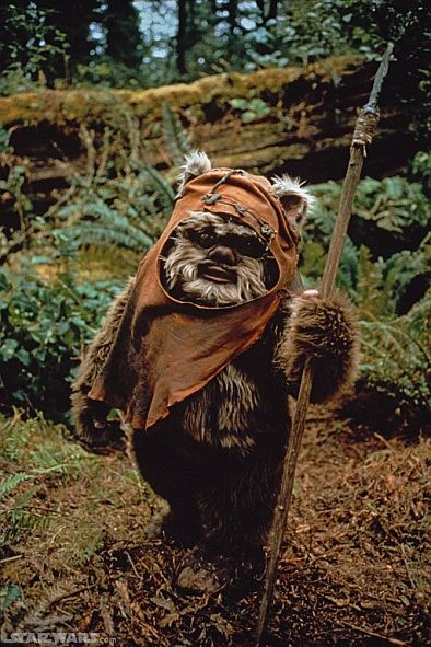 Fictional-animals-Ewok